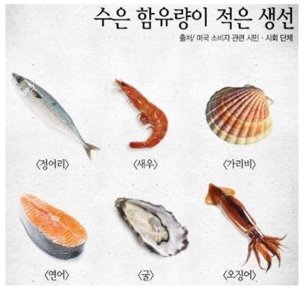 수은함량-적은생선